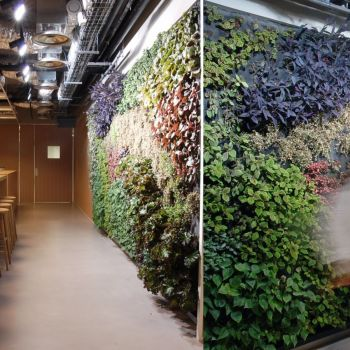 Porro - Office Building – Paris (France)